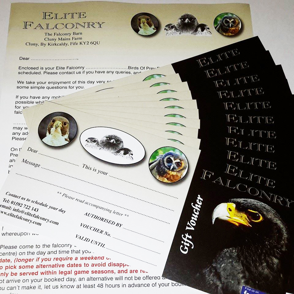 Elite Falconry Experience Vouchers